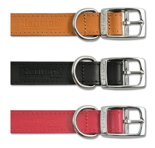 Ancol Leather Dog Collar