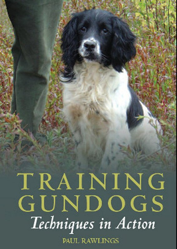 Training Gundogs: Techniques in Action from Gundog Solutions